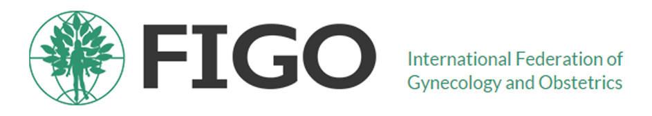 Khuyến cáo của FIGO về việc sử dụng acid folic dự phòng dị tật ống thần kinh 1