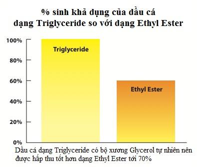 Quá trình hấp thu và chuyển hóa Triglycerid tự nhiên hiệu quả hơn 1