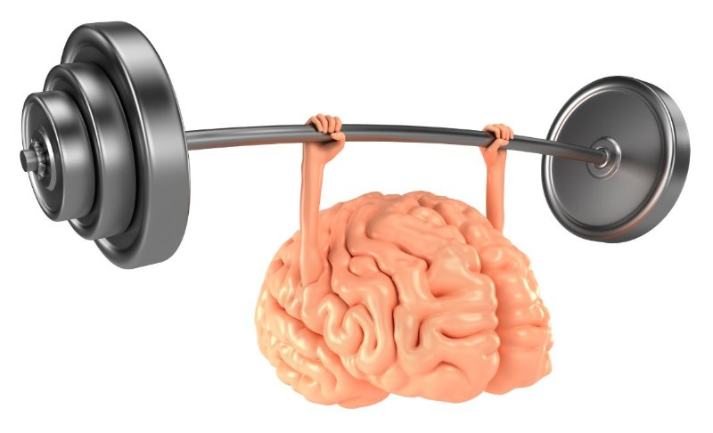 Ăn đủ dinh dưỡng để hỗ trợ sự phát triển não bộ của con 1
