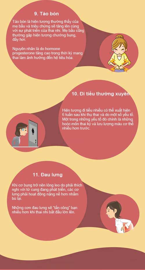 [Infographic] 11 dấu hiệu thường gặp khi mang thai 7
