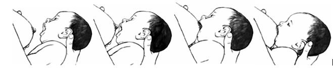 5.Dấu hiệu bạn cho con bú đúng cách 1