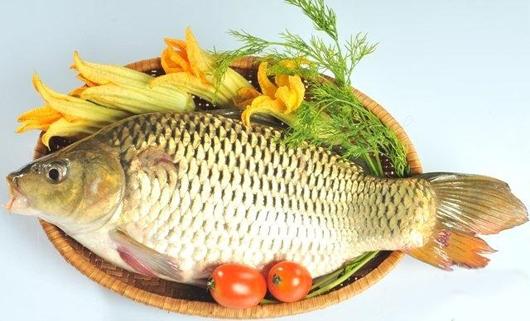 3. Cá chép 1