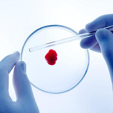 Những xét nghiệm trong quá trình mang thai 1