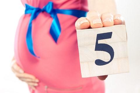 Mang thai tháng thứ 5 - Sự thay đổi của mẹ 1