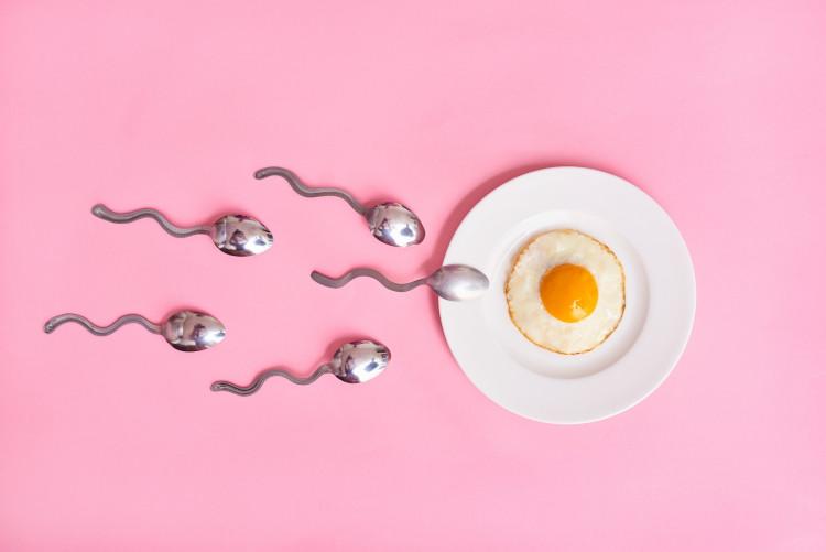 """Thời điểm dễ thụ thai nhất – Bạn đã biết """"canh"""" chưa? 1"""