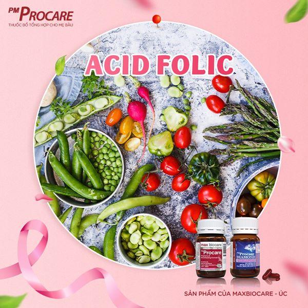 Axit folic / folate 1