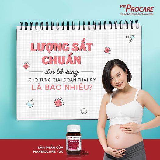 Lượng sắt chuẩn cho từng giai đoạn thai kỳ 1