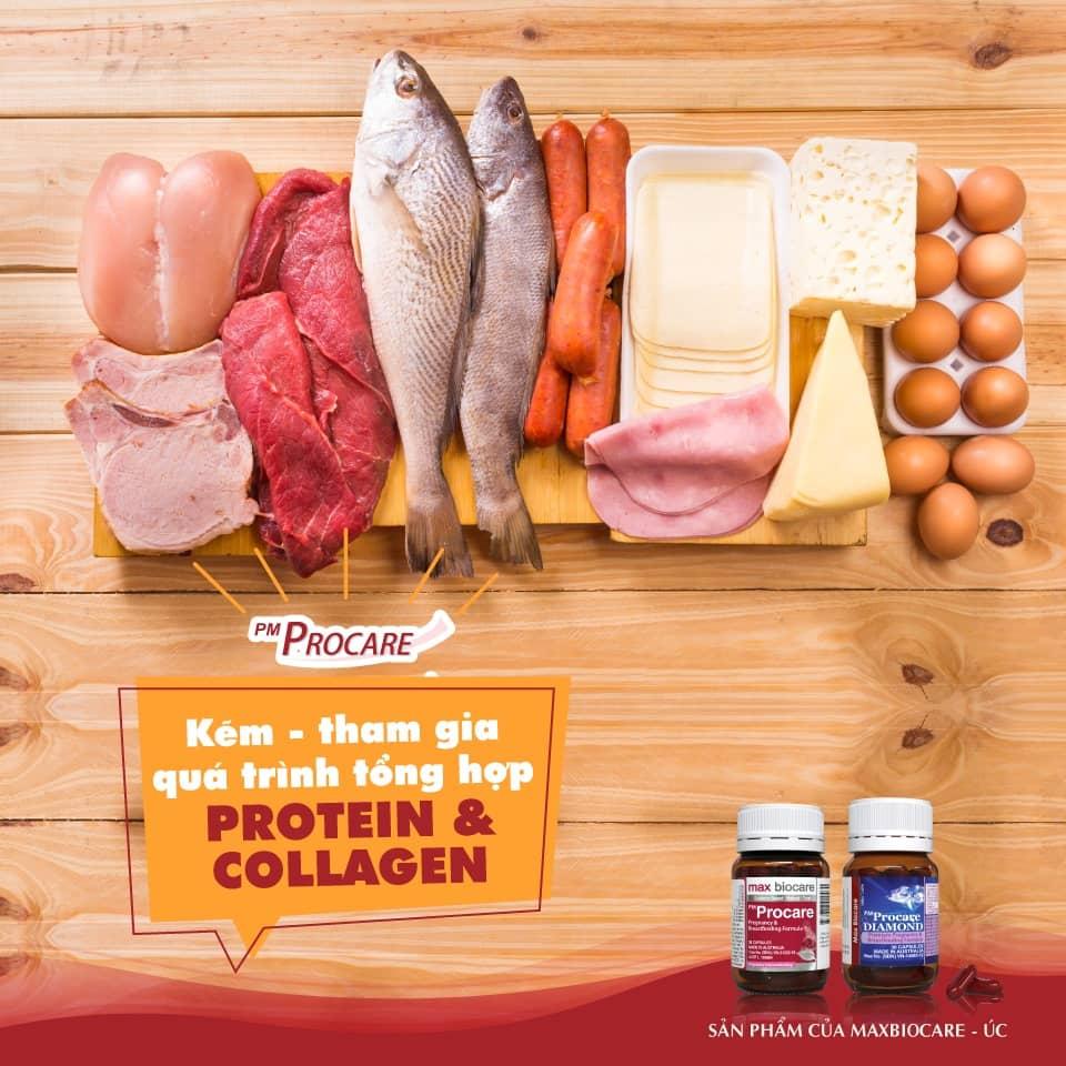 Kẽm – Tham gia quá trình tổng hợp protein và collagen 1